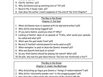 The Boy in the Dress by David Walliams Comprehension Questions
