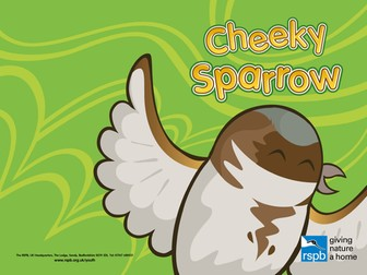 Cheeky Sparrow; Story to help young children identify birds