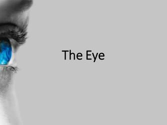New AQA GCSE Biology The Eye Lesson