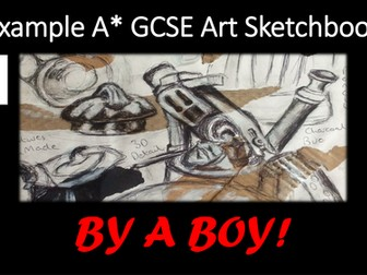 Art. GCSE Art Sketchbook by a BOY (A* Grade)