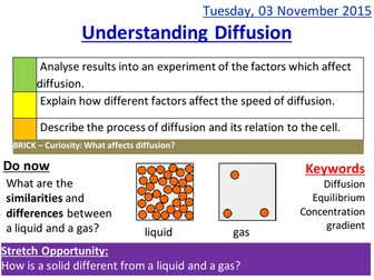 Understanding diffusion lesson