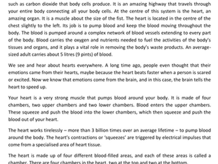 Circulatory System Diagram Worksheet Human Blood Circulation ...
