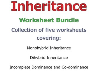 Punnett Squares and Inheritance DISCOUNT BUNDLE SAVE 40%