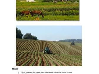ORGANIC FOOD - Sustainable?