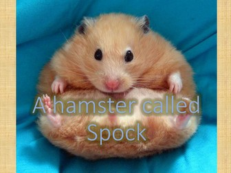 Comprehension and descriptive writing : A hamster called Spock