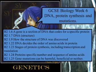 GCSE DNA  and Protein Synthesis