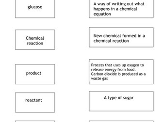 Year 8 Respiration Topic