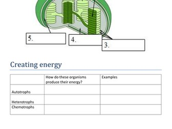 A Level Photosynthesis Revision Booklet