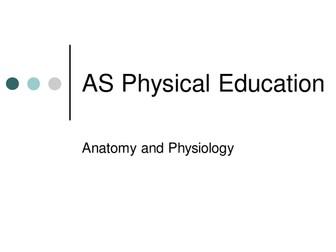 A Level PE - Muscle Fibre Types