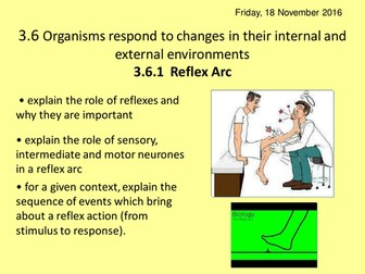 NEW AQA A2 BIOLOGY UNIT 6 - Organisms respond to changes in their environments