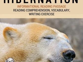 Winter Informational Reading Passage - Hibernation