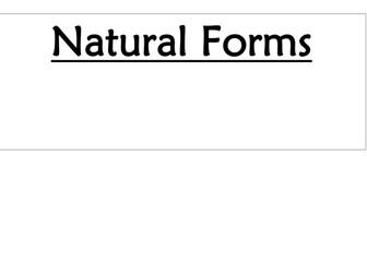 Art - Natural Forms