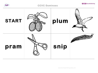 CCVC Teaching Activity & Worksheets