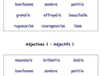 Adjectives in French Worksheets (18 French adjectives worksheets)