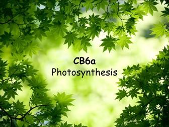 Edexcel CB6a Photosynthesis