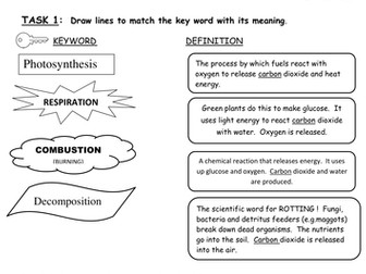 Carbon Cycle Worksheet by keene_eleanor - Teaching Resources - Tes