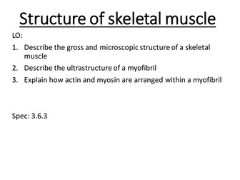 A level biology AQA Structure of skeletal muscle