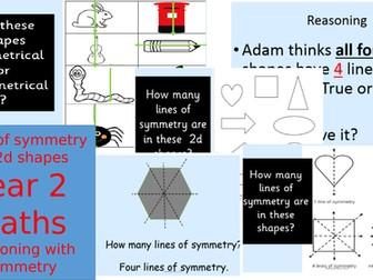 Symmetry Year 2 Greater Depth