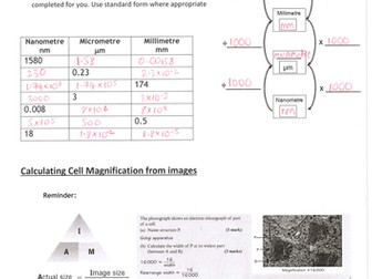 Microscopy workbook - converting units, magnification, scale bars