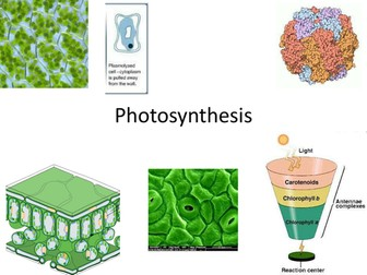 New OCR A Level Photosynthesis