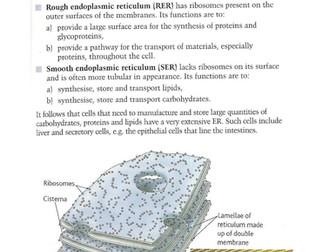 A level Biology - CELLS teaching materials