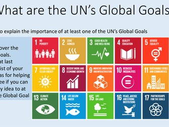 What are the UN's Global Goals?
