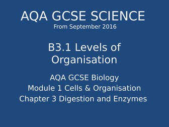NEW GCSE Biology - B3 Digestion and Enzymes