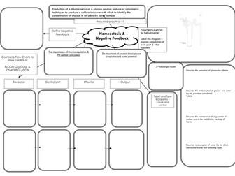 AQA A level Biology Mind Maps Bundle by Bradfordboy