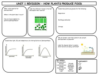 GCSE Photosynthesis Revision Mat