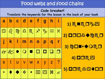 Food webs and food chains