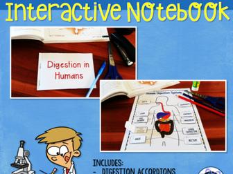 Digestion & Nutrition Interactive Notebook Activities