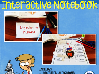 Digestion & Nutrition Interactive Notebook Activities