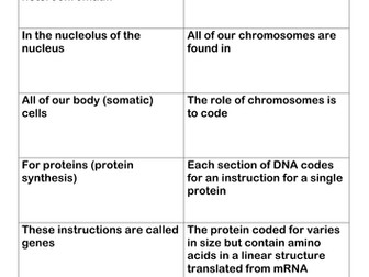 A level chromosome and DNA structure card loop / dominoes
