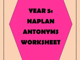 NAPLAN: Year 5 Antonyms