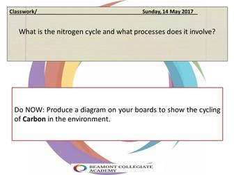 Nitrogen cycle pelmanism