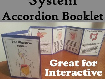 Organs of the Digestive System Accordion Booklet
