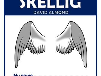Skellig - KS2 Comprehension Activities Booklet!