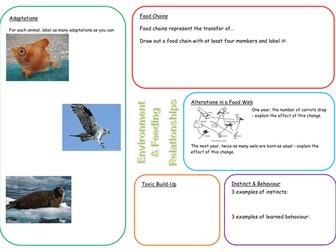 KS3 Environment and Feeding Relationships (Adaptations, Habitats and Food Chains) Revision Mat