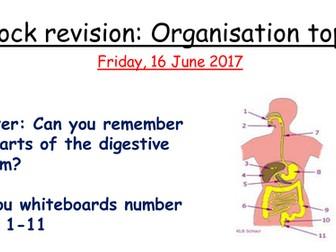 Organisation revision lesson AQA 1-9 GCSE