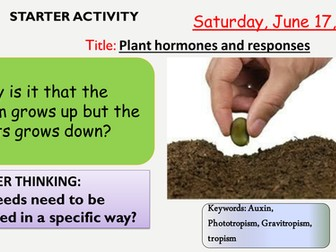 AQA new specification-Plant responses and using plant hormones-B11.9-B11.10