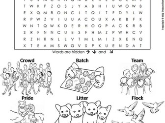 Collective Nouns Word Search