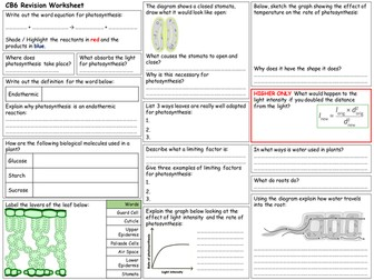 Edexcel CB6 Revision Worksheet
