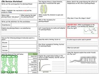Edexcel CB6 Revision Worksheet