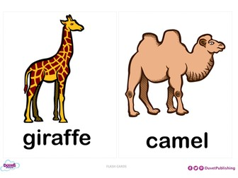 Zoo Animals Flashcards