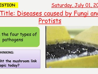 AQA new specification-Diseases caused by fungi and protists-B5.8