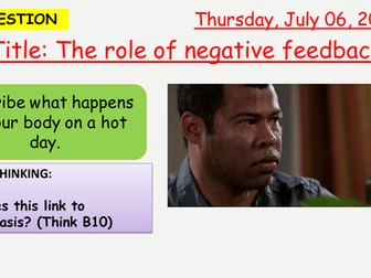 AQA new specification-The role of negative feedback-B11.4
