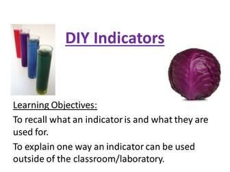 red cabbage indicator - observed lesson (outstanding)