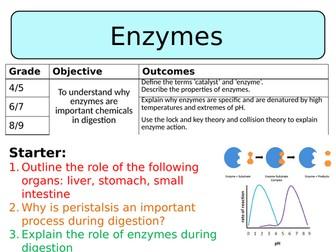 NEW AQA Trilogy GCSE (2016) - Enzymes