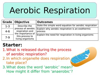 NEW AQA Trilogy GCSE (2016) Biology - Aerobic Respiration