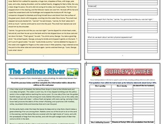 Of Mice and Men Comprehension Activity Booklet!